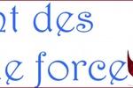 Guides et Astuces #1 : La quête des lignes de force par Mentalys.
